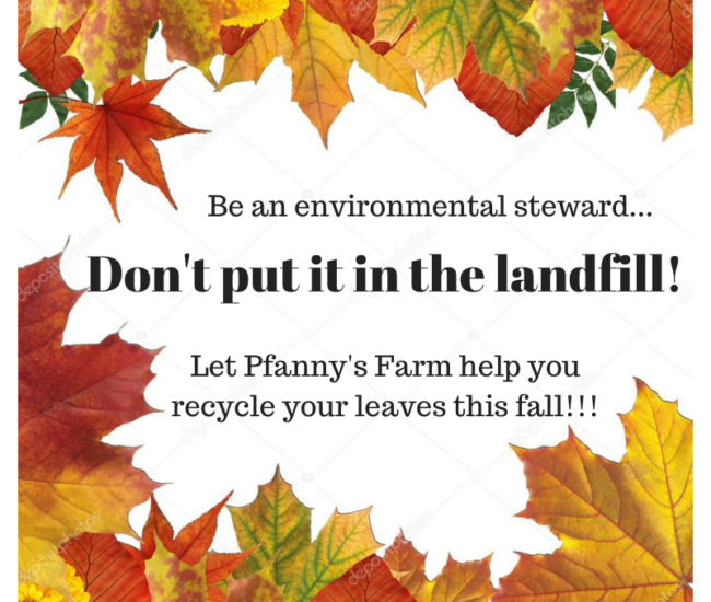 Don't put it in the landfill! (3)