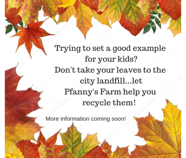 Trying to set a good example for your kids_Don't take your leaves to the city dump…let us help you recycle them!